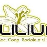 La cooperativa Cearpes, oggi gestito dalla coop LILIUM. non era un lager ma un centro  di eccellenza a livello nazionale.