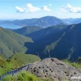 Anche quest'anno volontari con Inachis nel Parco Nazionale Val Grande