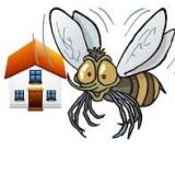 Le zanzare attaccano casa? Chiudetele fuori con le zanzariere fai da te di Allsistem