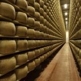 Stagionare al meglio con un consumo di energia prossimo allo zero: la proposta ERSAF per l'industria agri-food