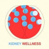 Kidney Wellness: giovani creativi e designer di IED Torino firmano le copertine animate del Giornale Italiano di Nefrologia