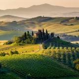 Agricoltura italiana etica in un mondo dove l'economia non sembra più averne