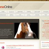 Horse Online - Cavalli & Equitazione - Il Portale sul mondo dei Cavalli