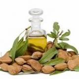 Olio di mandorle dolci: proprietà cosmetiche