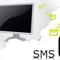 Pure Bros: soluzioni per il Mobile Marketing