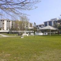 Selvazzano: Palazzo Bolis apre le porte