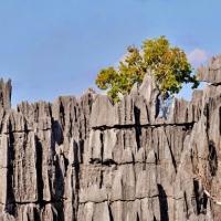 Viaggio alla scoperta del Madagascar