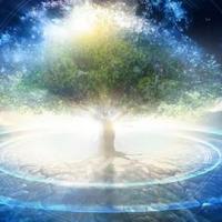 Olanda: la Chiesa di Scientology è un ente religioso di pubblico beneficio
