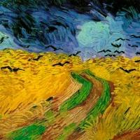 Gli apprezzamenti di Salvo Nugnes, manager dell'arte, riguardo alla mostra ambientata tra le mura di Palazzo Reale dedicata a  Vincent Van Gogh