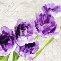 fiori appesi ad un chiodo. e' primavera?