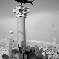 Cibo e fotografia, le tonnare protagoniste di una mostra di Boldrini nel Ristorante Accursio