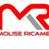 Ricambi auto online, per una scelta sicura ordina su www.molisericambi.com