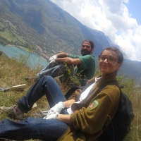 Estate con Inachis sul fronte della natura
