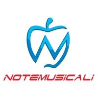 Fare musica di qualità, oggi cè NoteMusicali.com