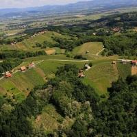 Vendemmia in Slovenia con soggiorno alle Terme di Catez