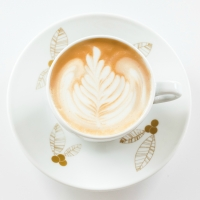 Domani al Trieste Coffe Festival la tappa regionale FVG del Campionato Italiano Latte Art: in gara i baristi ORO Caffè