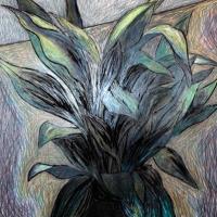 Papillon e bretelle cerimonia, eleganza e stile secondo Brucle