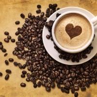 Cialde Nespresso o cialde Lavazza. Cosa scegliere?