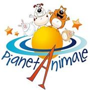 Articoli per animali, scegli quelli giusti per educarli