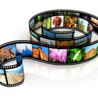Informare, divertire, scioccare: la forza di un video virale