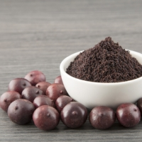 Bacche di Acai: Il super frutto