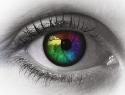 Color Design & Technology