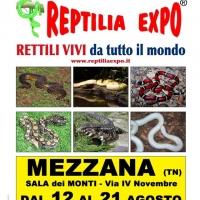 REPTILIA EXPO - L'affascinante mondo dei rettili a MEZZANA (Val di Sole)