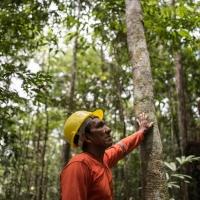 Fattoria Scaldasole per l'Amazzonia