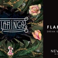 Musica Live firmata Nevermind con Flamingo