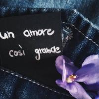 Il 16 Settembre in tutti i digital stores Un Amore Così Grande il nuovo singolo di Tarantino feat. Michele Cammarota