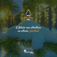 "GREEN NETWORK ENERGY: PARTE L'INIZIATIVA ""GREEN CHRISTMAS TREES"""