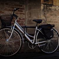 Le bici online contro i blocchi del traffico 2016/2017