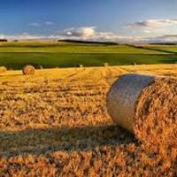 Legge Stabilità, ancora agevolazioni per l'acquisto macchine e attrezzature agricole