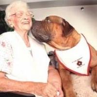 Animali alla casa di riposo di Roncobilaccio: la pet therapy per gli anziani