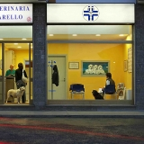 L'Ambulatorio Veterinario