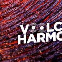 Krèmino, misterioso artista di Lipsia, pubblica l'ep con l'etichetta Napoletana Voolcano Harmonix Records