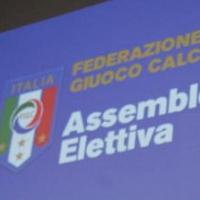 Abodi Elezioni FICG, sfida all'ultimo voto con Tavecchio