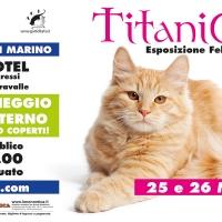 Titanicat Spring Edition 2017 - Esposizione Felina Internazionale 25 e 26 Marzo 2017