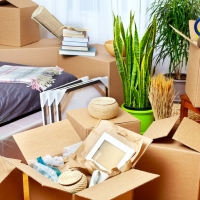 Traslochi: in Italia trasferirsi in una nuova casa costa in media 860 euro