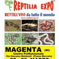 REPTILIA EXPO - L'affascinante mondo dei rettili il 25 e 26 Marzo a MAGENTA (MI)
