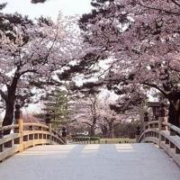 A Milano, una festa di compleanno per i 150 anni di amicizia tra Giappone e Italia con l'edizione commemorativa del libro La Via della Felicità in giapponese