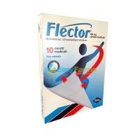 Easyfarma  tra i prodotti in vetrina ha scelto Flector