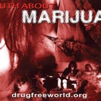 Distribuzione opuscoli: La verità sulla Marijuana