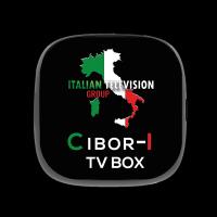 """IL DECODER ITALIANO """"CIBOR-I"""" SBARCA A MIAMI"""