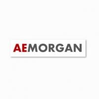 Studio AE Morgan, consulente ideale per il rientro dei capitali esteri in Italia