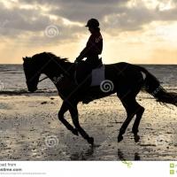 LADY HORSE UNA FAVOLA AL FEMMINILE TRA I CAVALLI DEL C.I.T