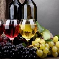 Una vetrina per i vini italiani nel mondo