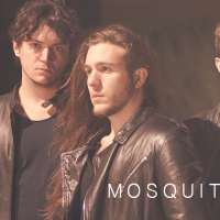 """All For Your Love"", nuovo singolo dei Mosquitoes."