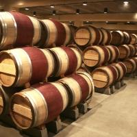 Il vino: prodotto leader per l'esportazione del Made in Italy