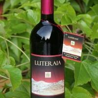 I Vini italiani green conquistano gli USA